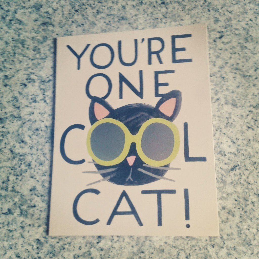 Charlotte-Buxtn-summer-youre-one-cool-cat-1024x1024